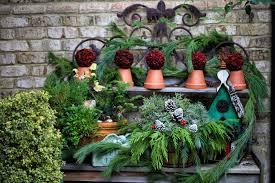 The Graceful Gardener » Christmas Garden