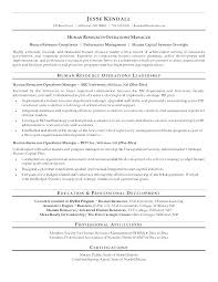 Hr Director Resume Awesome Hr Sample Resume Stanmartin