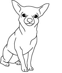 Coloriage Chien Chihuahua Imprimer