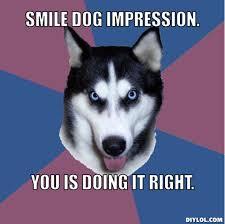 Smile dog meme. by skylanderlover123 on DeviantArt via Relatably.com