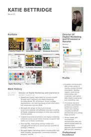Digital Marketing Resume Samples Visualcv Resume Samples Database