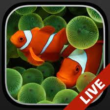 Aquarium Dynamic Wallpapers On The App Store