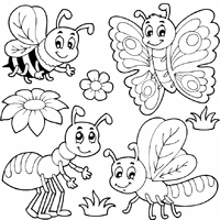 Small Picture Bug Coloring Pages Surfnetkids
