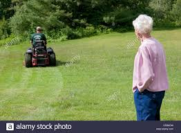 Image result for Lawn Care Services images
