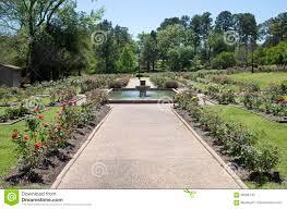 nice rose garden design in tyler tx usa