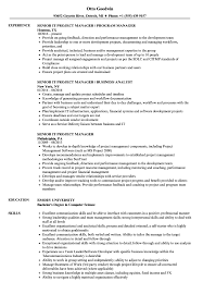 It Project Manager Resume Sample Senior IT Project Manager Resume Samples Velvet Jobs 48