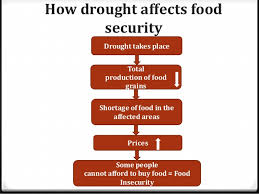 food security in