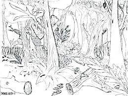 Tropical Rainforest Coloring Pages Free Printable Tropical Coloring
