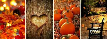 fall fb cover