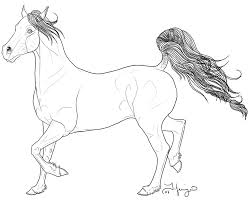 Small Picture arabian horse coloring pages 6 pics of arabian horse coloring