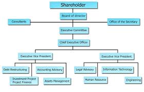 Chart Advisor Organization Chart Financial Advisor C Am Creation Co Ltd