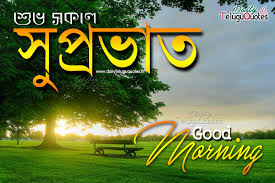 Good Morning Quotes In Bengali Language Daily Motivational Quotes