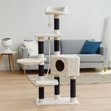 cat tree in living room