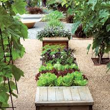 Small Kitchen Garden Small Veggie Garden Ideas Sunset