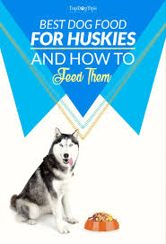 5 Best Dog Food For Huskies 2017 What To Feed Huskies For