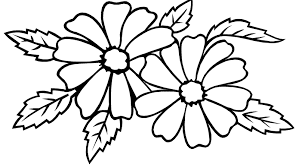 Small Picture Jasmine Flower Coloring Pages Flower Coloring pages of