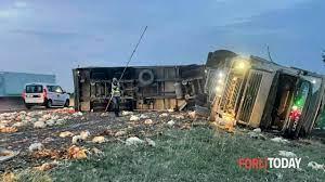 Incidente A14 questa mattina 16 settembre 2021 galline morte e in fuga