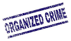Image result for organized crime