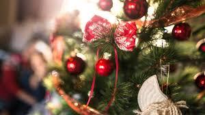 Diy Weihnachtsbaum Es Muss Nicht Immer Der Klassiker Sein