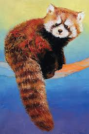 canvas on red panda wall art with cute red panda canvas wall art by michael creese icanvas