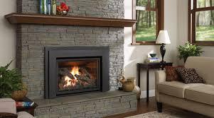 fireplace inserts gas gas fireplace insert reviews livingroom sofa window plant interesting fireplace
