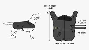 Dog Accessories Size Guides Barbour