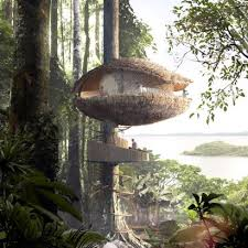 Treehouse architecture Dezeen