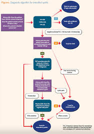 Interstitial Cystitis Algorithm To Simplify Diagnosis Of