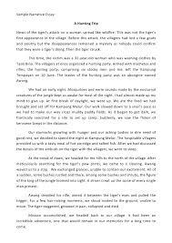 Narrative Essay Example College Narrative Essays Sample Good Narrative Essay Example How