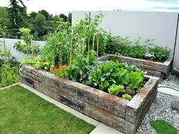 cool veggie garden ideas best small table gardens on raised vegetable diy plans image