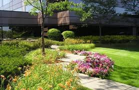 office landscaping. grass mowing weekly waukesha commercial landscaping landscapers office