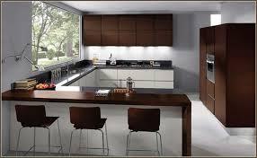 painting laminate kitchen cabinetsUncategorized  Painting Cabinet Doors Can I Paint Laminate