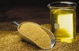 Resultado de imagen para propiedades lecitina de soja
