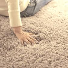 soft rugs for bedroom top oval carpet long hair gy mat soft area rug bedroom for
