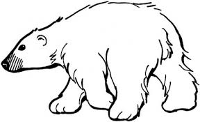 Small Picture Easy free polar bear coloring page Grootfeestinfo