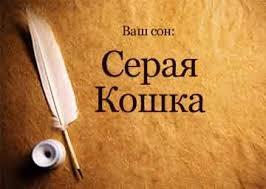 Сонник <b>Серая Кошка</b> видеть во сне к чему снится?