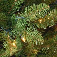 The Holiday Aisle Kingswood Fir 90Kingswood Fir Pencil Christmas Tree