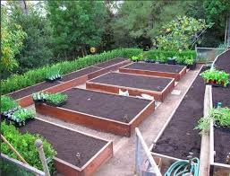 Small Picture Small Vegetable Garden Layout Home Decorating Ideas Interior