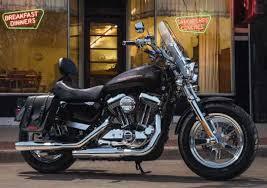 52000034 signature solo seat with rider