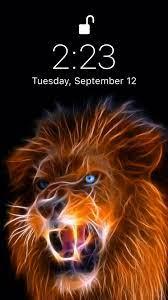 Beautiful lion wallpaper [Video ...