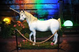 life size unicorns found my 30th birthday cake fat skinny girl