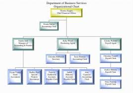 Download Example Organizational Chart For Small Business