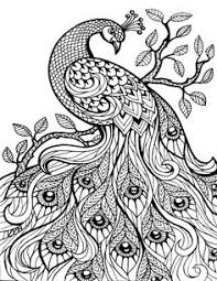 Small Picture Hard Owl Coloring Pages Tiger Liked Wild Cat In The Wild