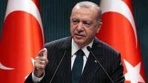 إردوغان: تركيا لا تتحمّل مسؤولية الدول الأخرى بلجوء الأفغان