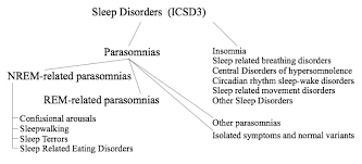 an essay on sleep related sexual behaviours and offences related overview