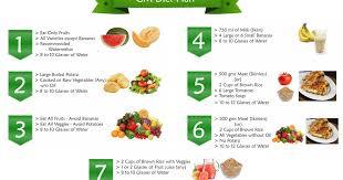 Gm Diet Plan Chart Day 1
