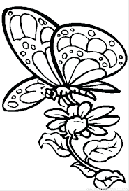 Butterfly Coloring Pages Printable