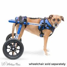 dog harness for pulling wheelchair luxury walkin lift bo dog harness of beautiful dog harness for