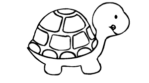 Small Picture 29 coloring pages of turtle Print Color Craft