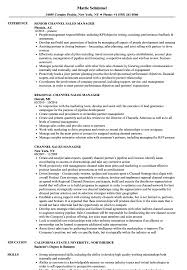 Channel Sales Manager Resume Sample Channel Sales Manager Resume Samples Velvet Jobs 2